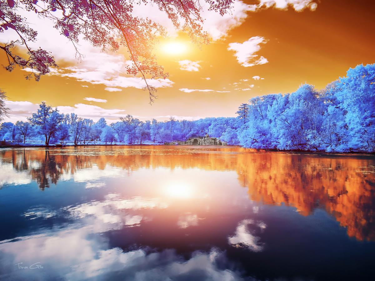 Double Reflections, Majolan's Park, Bor.