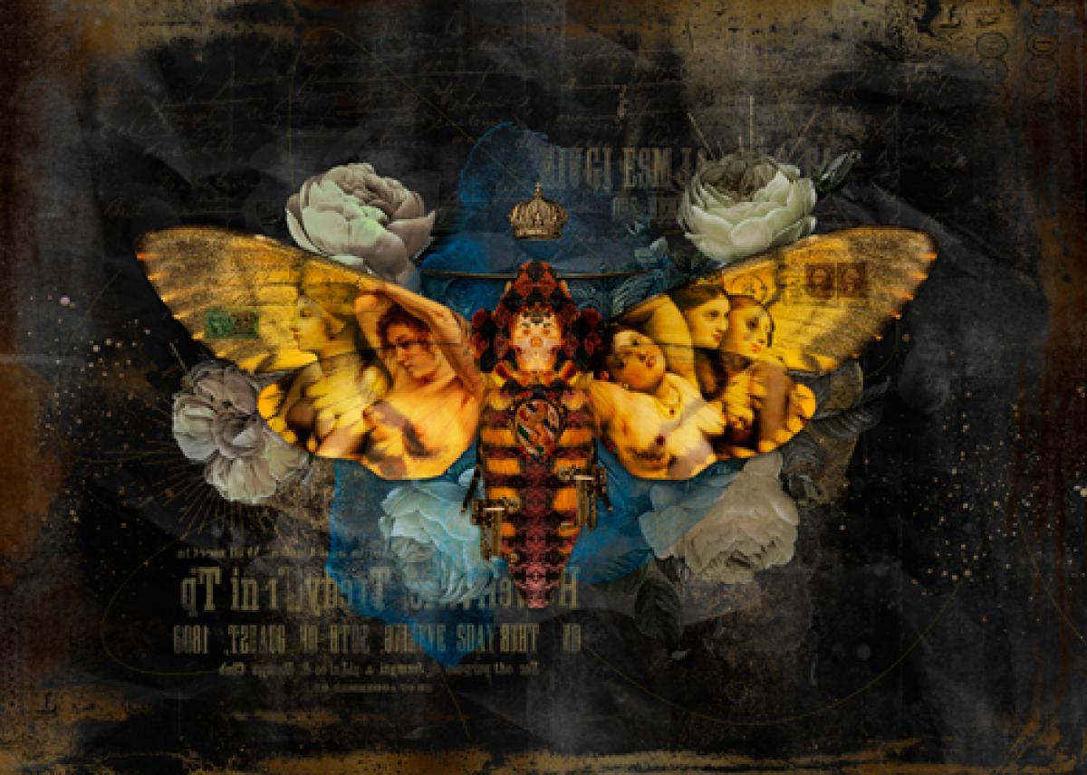 Metamorphoses VIII