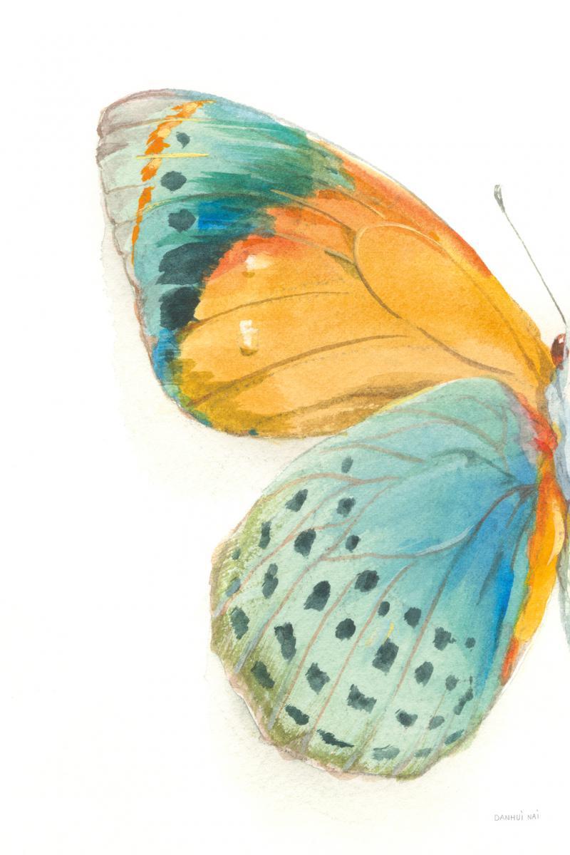 Fragile Wings I