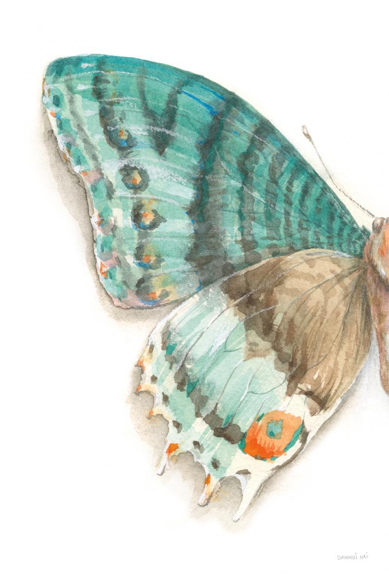 Fragile Wings III