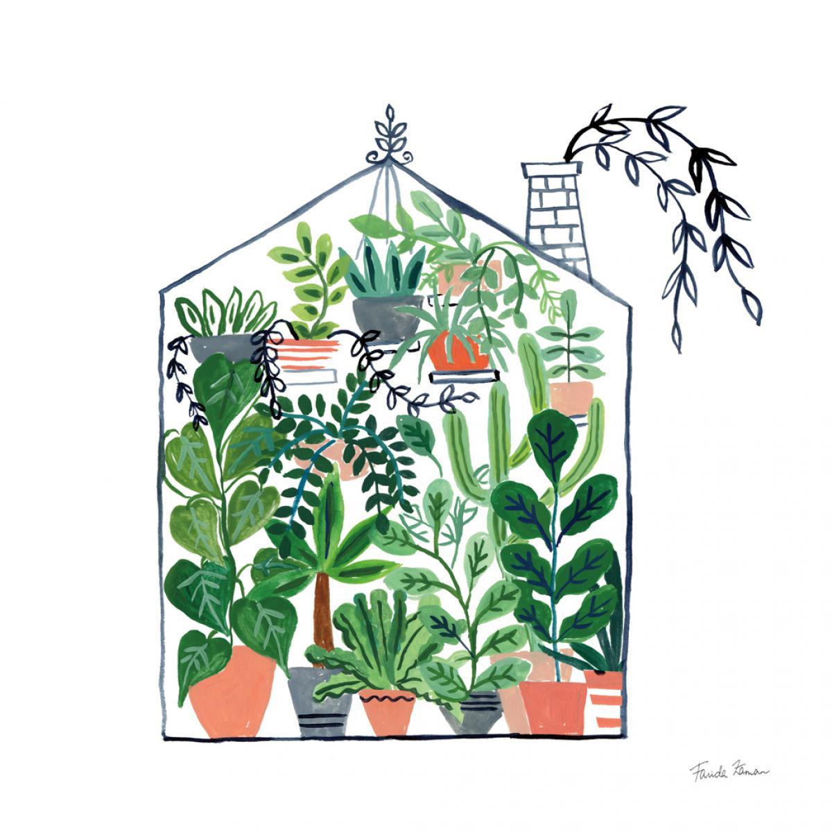 Greenhouse II