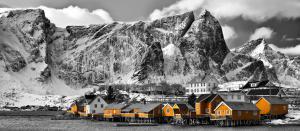 Lofoten Reine Panorama mit gelben Häuser