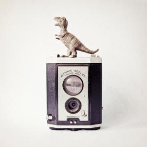 T-Rex & Vintage Camera