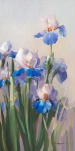 Iris French Cancan