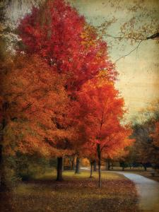 Among the Maples