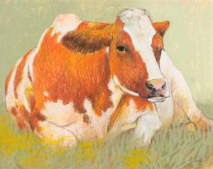 Cow in the Spring