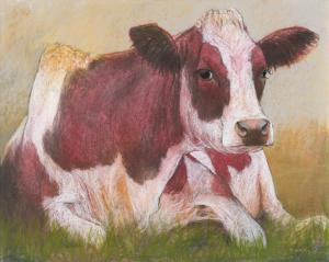 Cow in the Summer