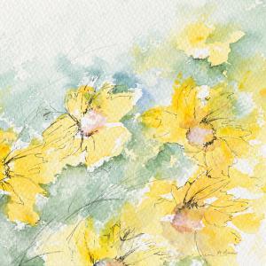 Fleurs du soleil II