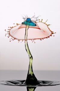 Umbrella Crown