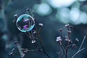 Fragile Perle