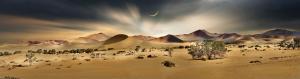 Namib Sandsea II