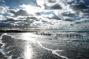 Glistening Shoreline