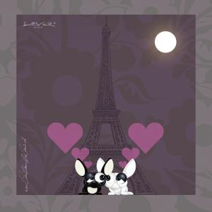 Lover by Lover - Paris City of Love