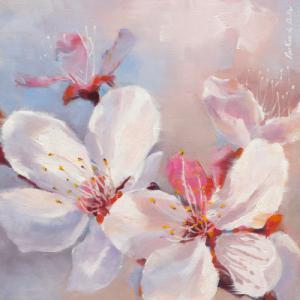 Prunus en fleurs I