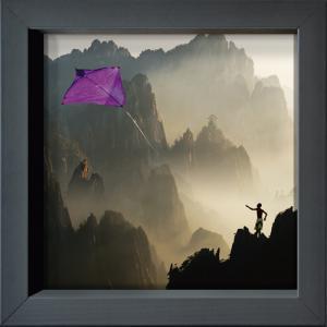 Le cerf-volant des cimes