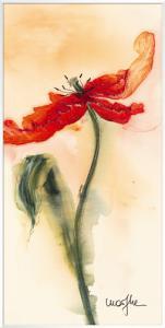 Tulipe II