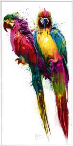 Tropical Colors II