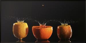 Trilogie Fruits II