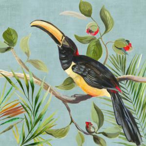 Paradise Toucan II