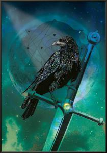 Cosmic Raven