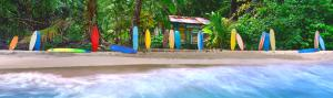 Surf Heaven