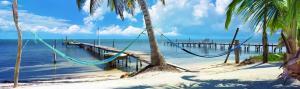 Island Living