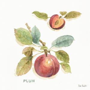 Orchard Bloom IV