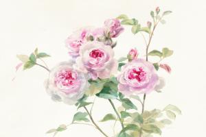 Sweet Roses on White Green
