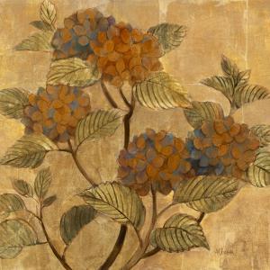 Golden Hydrangea