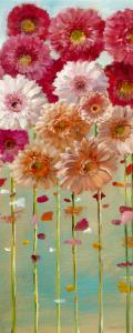 Daisies Spring I