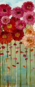 Daisies Spring II