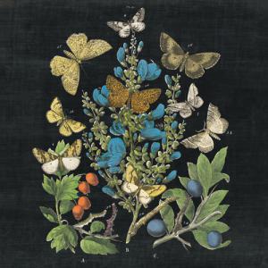 Butterfly Bouquet on Black II