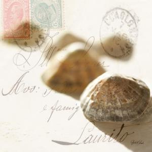 Postal Shells IV