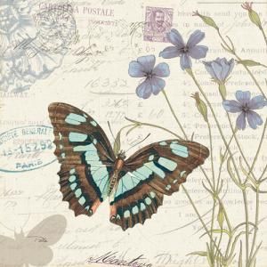 Papillon Tales I