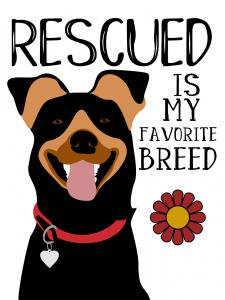 Rescued is my Favourite Breed