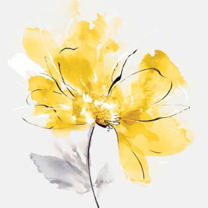 Tender Love I Yellow Version
