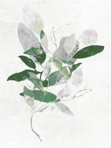 Emerald Botanics I