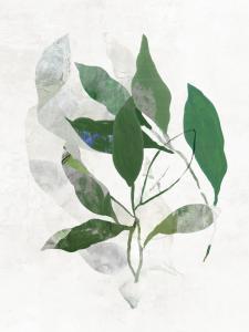 Emerald Botanics II