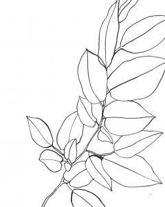 Magnolia Branch II