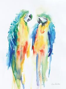 Colorful Parrots I