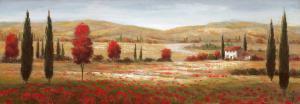 Tuscan Poppies I