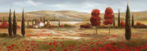 Tuscan Poppies II