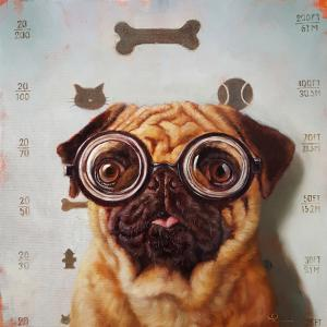 Canine Eye Exam
