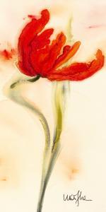 Tulipe I