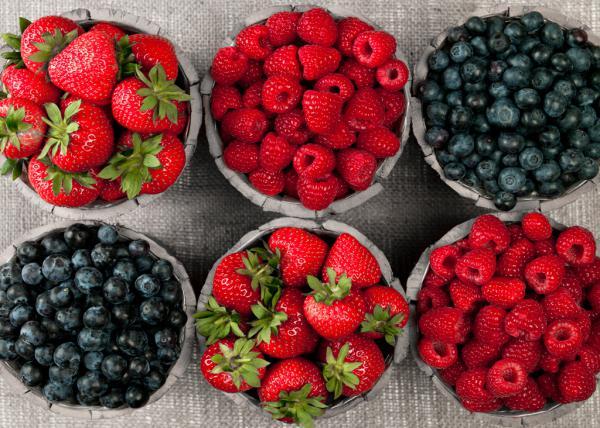 Berries I