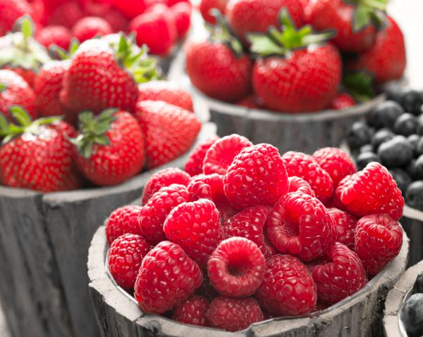 Berries II