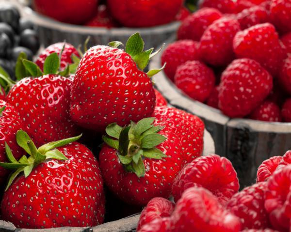Berries III