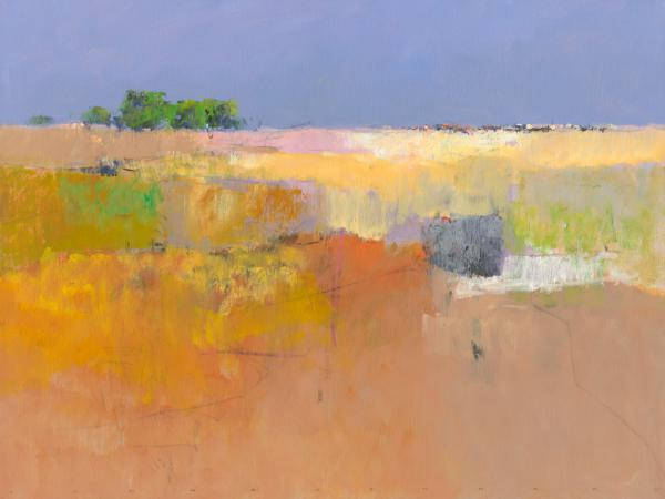 Meadow in Color