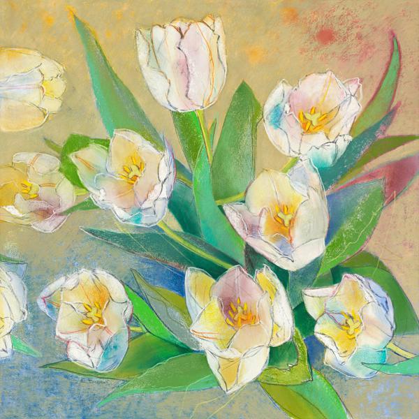 Weiße Tulpen 2