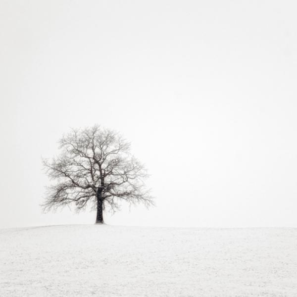 Wintersturm II